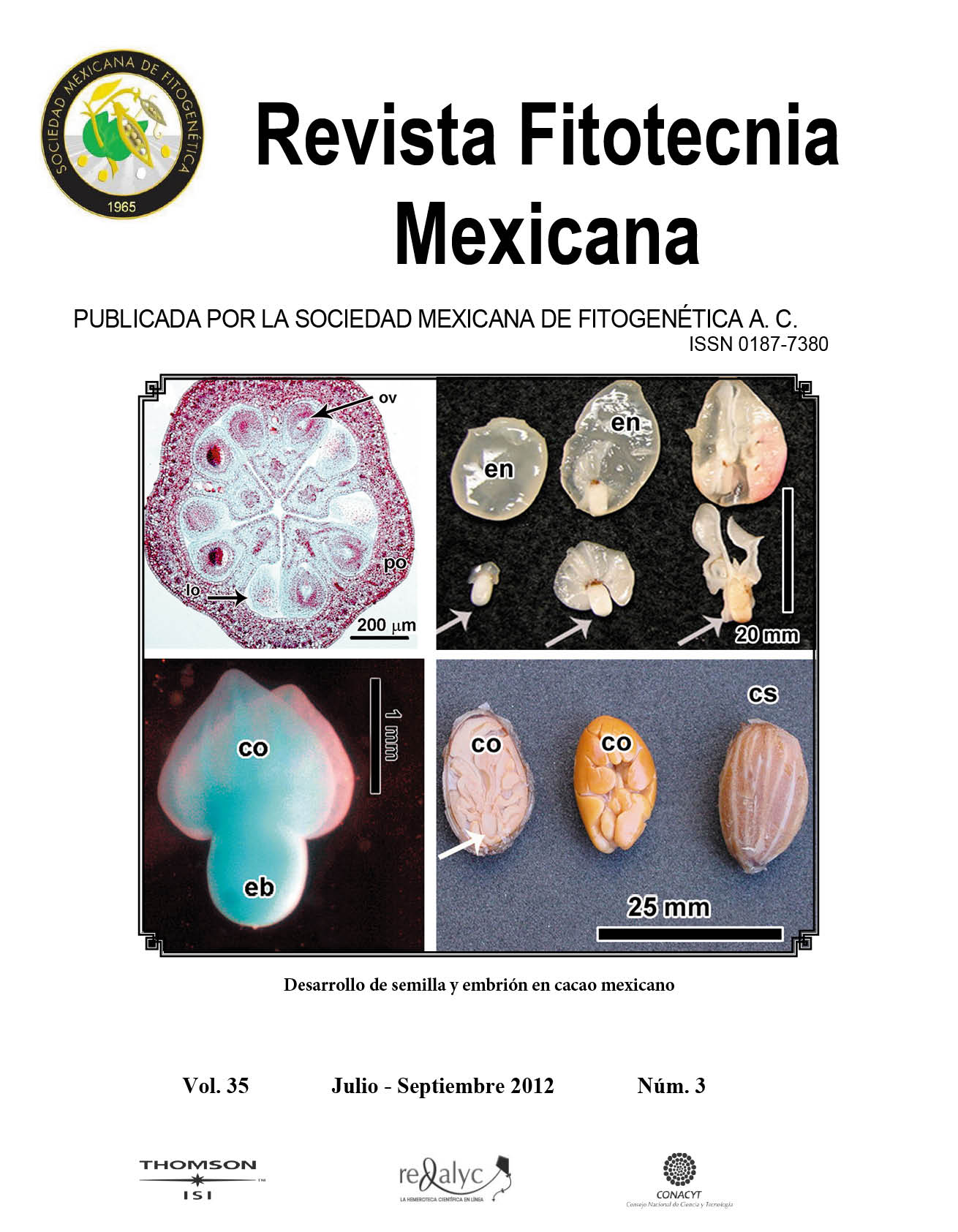 Laura fajardo mexicana del estado de mexico masturbandose 6